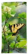 Butterfly Tiger Swallow Beach Towel