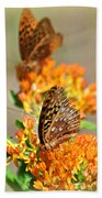 Butterfly Weed 2 Beach Towel