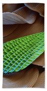 Butterfly Wing Scale Sem Beach Towel