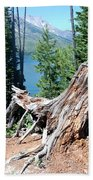 By Jenny Lake Beach Towel
