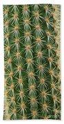 Cactus 19 Beach Towel