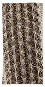 Cactus 19 Sepia Beach Towel