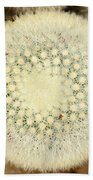 Cactus 44 Beach Towel