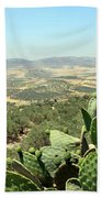 Cactus At Samaria Beach Towel