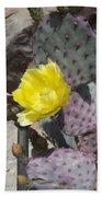 Cactus Flower 2 Beach Towel by Snake Jagger