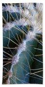 Cactus I Beach Towel