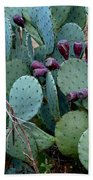Cactus Plants Beach Towel