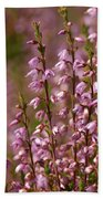 Calluna Vulgaris 2 Beach Towel