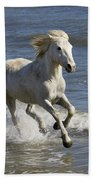 Camargue Horse Equus Caballus Running Beach Towel