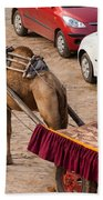 Camel Ready To Take Tourists For A Desert Safari Beach Towel