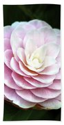 Camellia Twenty-two  Beach Towel