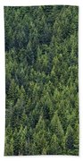 Canadian Boreal Forest. Beach Towel