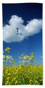 Canola Flowers, Marquette, Manitoba Beach Towel