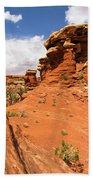 Canyonlands Textures Beach Towel