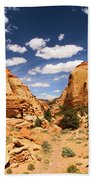 Capitol Reef Cohab Canyon Beach Towel