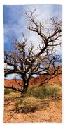 Capitol Tree Beach Towel