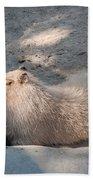 Capybara Beach Towel