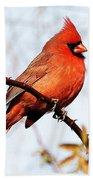 Cardinal 1 Beach Towel