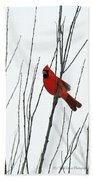 Cardinal In Willow  Beach Towel