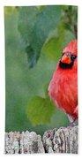 Cardinal Red Beach Towel