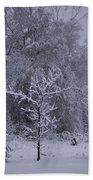 Carolina Snowfall Beach Towel