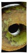Carpenter Ant Camponotus Schmtzi Beach Towel