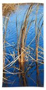 Cattail Reeds Beach Towel by Ms Judi