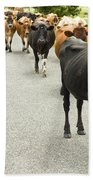 Cattle Drive On A Road  Beach Towel