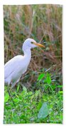 Cattle Egret Beach Towel