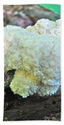 Cauliflower Mushroom On Log Beach Towel