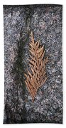 Cedar On Granite Beach Towel
