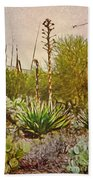 Century Plant Beach Towel