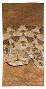 Cerastes Cerastes Horned Viper Beach Towel