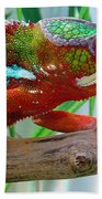 Chameleon Close Up Beach Towel