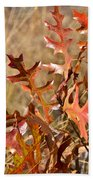 Changing Colors Beach Towel
