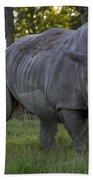 Charging Rhino. Beach Towel