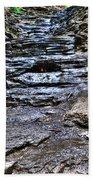 Chasing The Eternal Flame At Chestnut Ridge Park Beach Towel