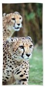 Cheetah Brothers Beach Towel