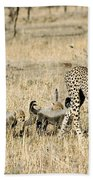 Cheetah Mother And Cubs Beach Towel