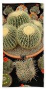 Chelsea Flower Show Cacti Display Beach Towel