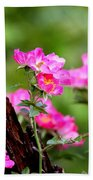Cherokee Rose Card - Flower Beach Towel