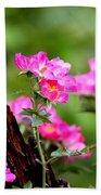 Cherokee Rose Card - Flower Beach Towel