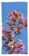 Cherry Blossom Branch Beach Towel