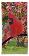 Cherry Blossom Cardinal  Beach Towel