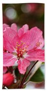 Cherry Blossom Greeting Card Blank With Decorations Beach Towel