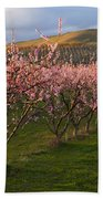 Cherry Blossom Pink Beach Towel
