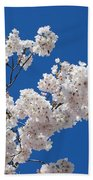 Cherry Blossoms Beach Towel