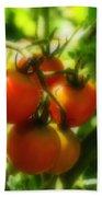 Cherry Tomatoes On The Vine Beach Towel