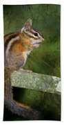 Chipmunk In The Forest Beach Sheet