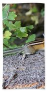 Chipmunk On A Log Beach Towel